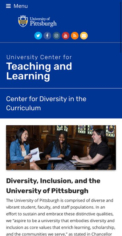 Center for Diversity in the Curriculum web page