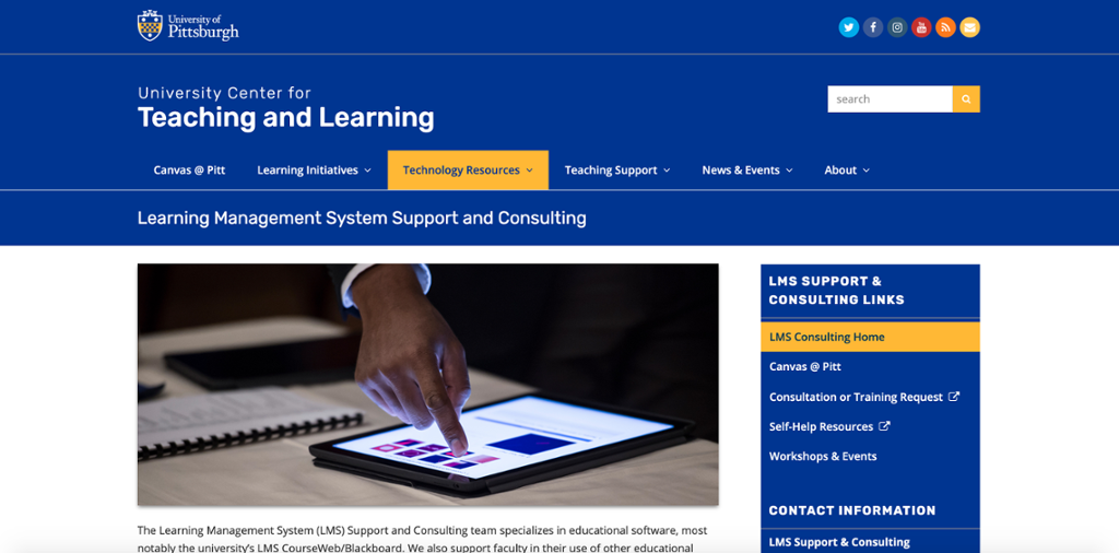 LMS Support and Consulting web page