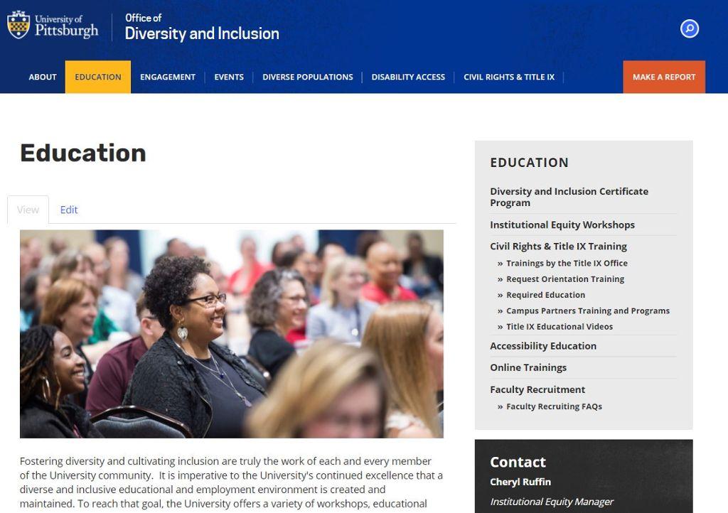 Screenshot of Diversity Education landing page